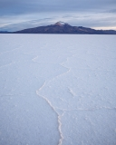 Hexagonal salt crystal formations on the Salar with distant mountain