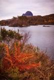 Loch Druim fern