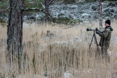 Cairngorm National Park (photo by Dimitri Vasileiou)
