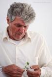 Examining a caper plant