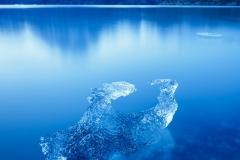 Iceberg at Lago Grey