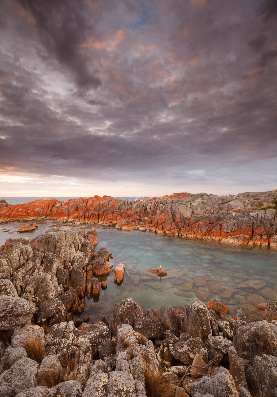 Eddystone Point sunrise