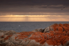 Eddystone Point sunrise rays