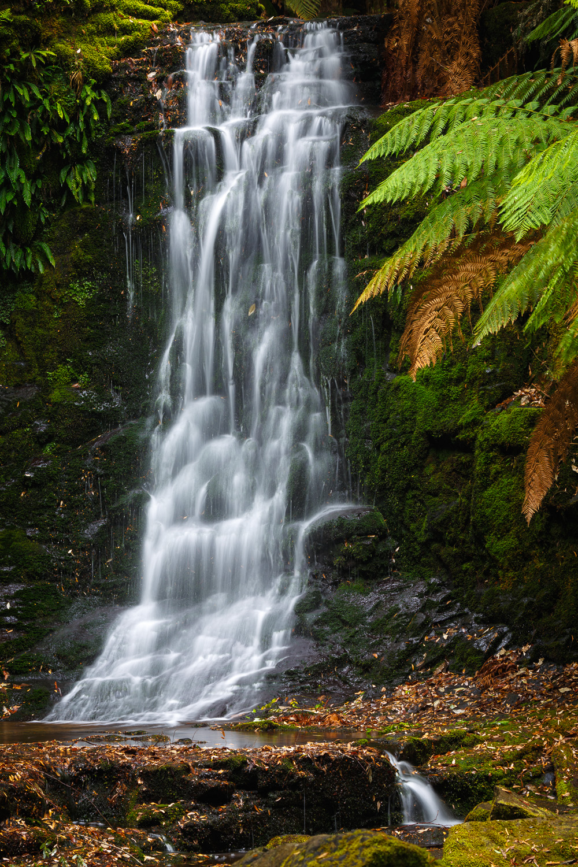 Horseshoe Falls detail, Mount Field National Park