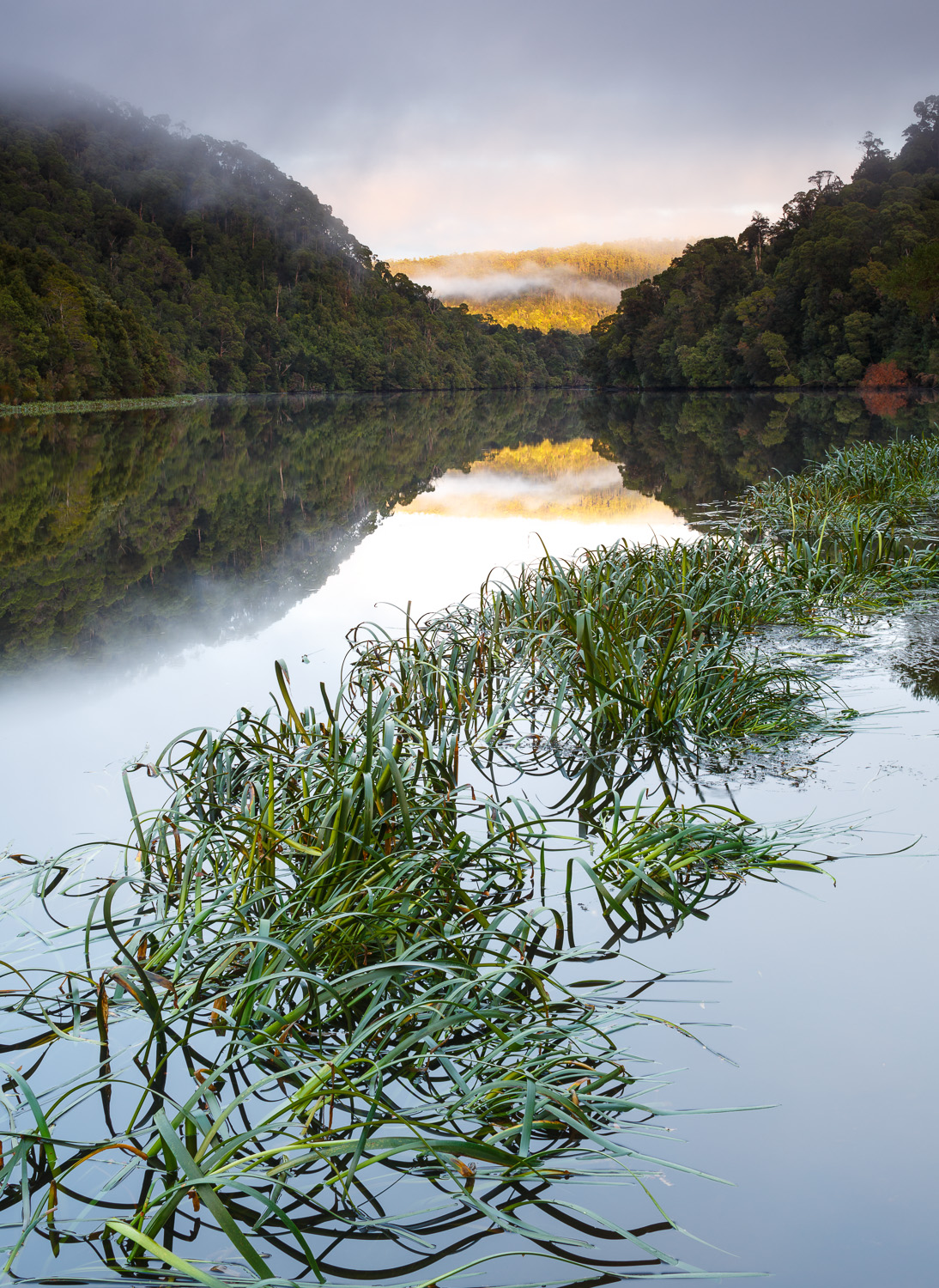 Sunrise along the Pieman River at Corinna