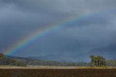 Rainbow, Mount Field National Park