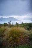 Button Grass and Lake Pedder from Scott's Peak