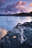 Sunrise at Lago Pehoe