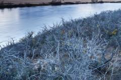 Serrano River at dusk