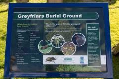GreyfriarsGraveyard_wildlife_MB